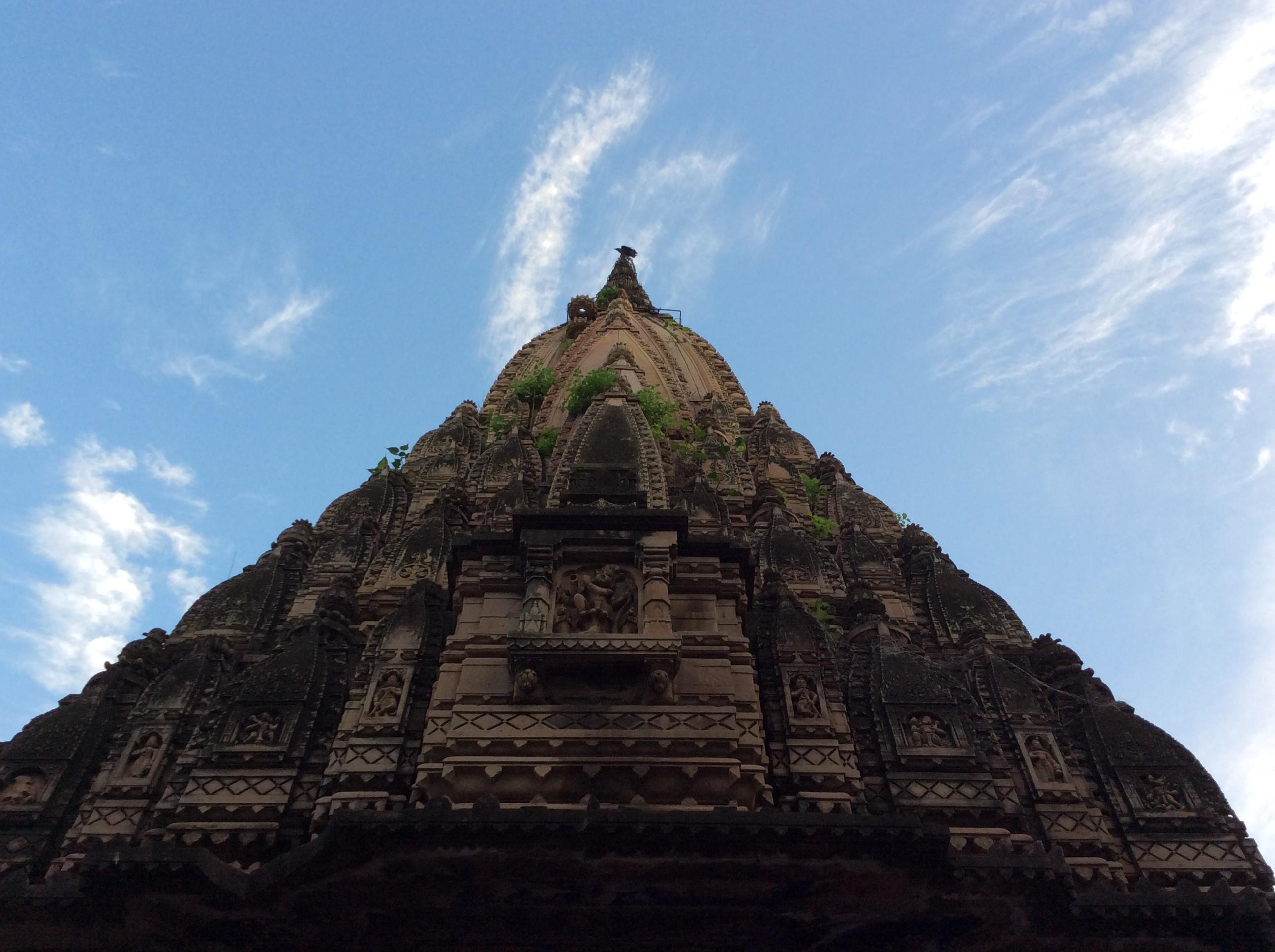 ...eigener Tempel im verlassen Palast- mit Papagei auf der Spitze...