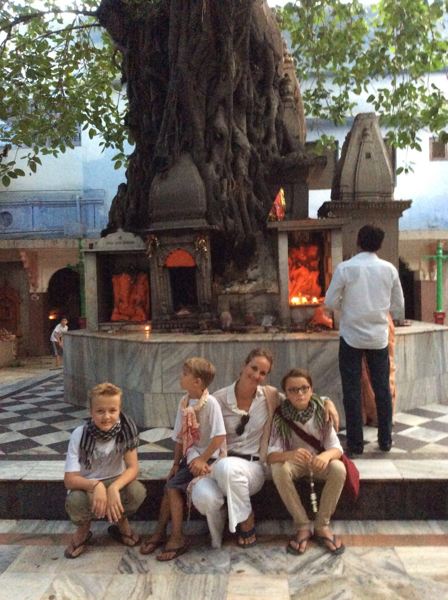 600 Jahre ist dieser Bodhi-Baum! Sagt man.